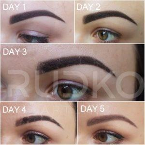 PowderEyebrows Healing Day by Day